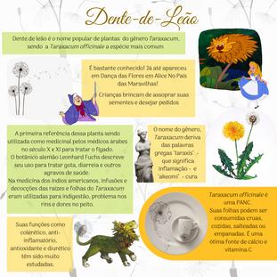 Dente de Leão (2).png