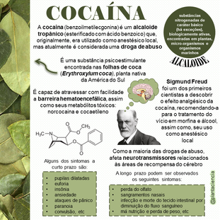 cocaina.png