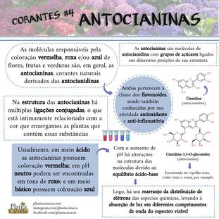 Corantes_#4_Antocianinas.jpg