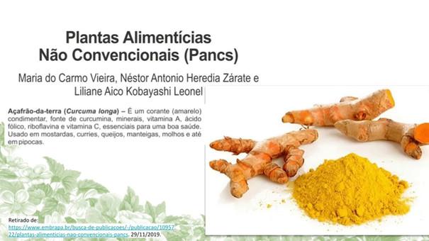 Plantas Alimetícias Não Convencionais (PANCs)