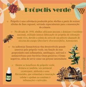 propolis corrigido.png