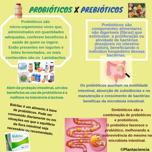 pre probioticos.png