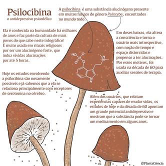 Psilocibina.png