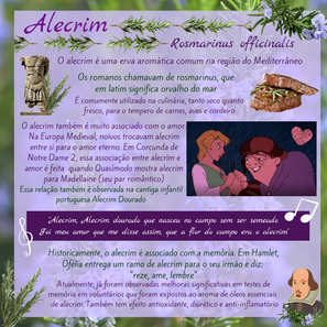 alecrim.png