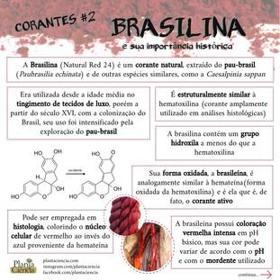 Corantes_#2_-_Brasilina_(parte_1).jpg