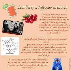 cranberry 3.png