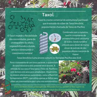 Taxol (2).png