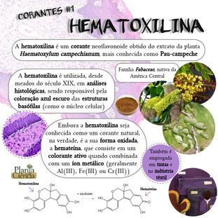 Corantes_#1_-_Hematoxilina.jpg