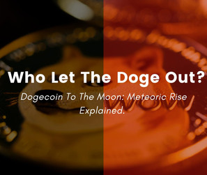 Who let the Doge Out?   The Meteoric Rise of Dogecoin explained.
