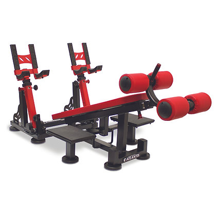 DECLINE DUMBELL PRESS W/ PIVOT
