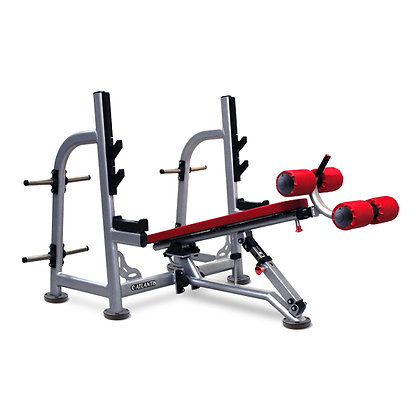 OLY FLAT / DECLINE BENCH PRESS