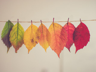 Living in Rhythm with the Seasons