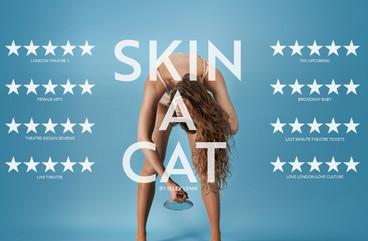 Skin A Cat TwitterCover_edited_edited.jp
