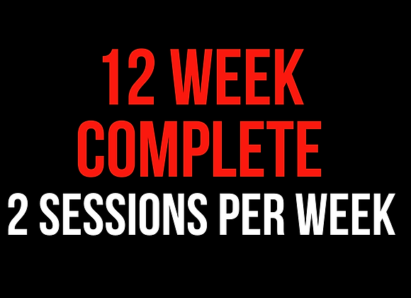 12 Week Complete (2 Sessions Per Week)