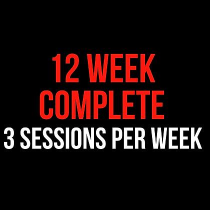 12 Week Complete (3 Sessions Per Week)