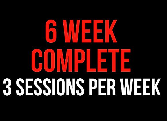 6 Week Complete (3 Sessions Per Week)