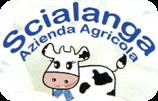Logo-316w.png