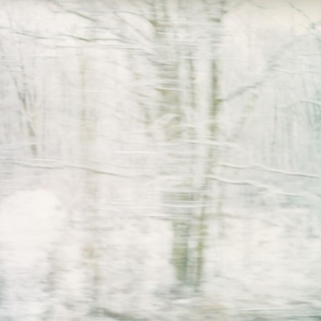 White Noise 12.jpg