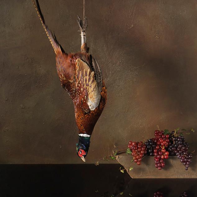 Falling Bird 018