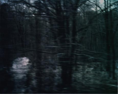 White Noise 13