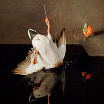 Falling Bird 11