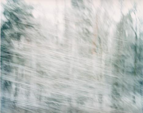 White Noise 10