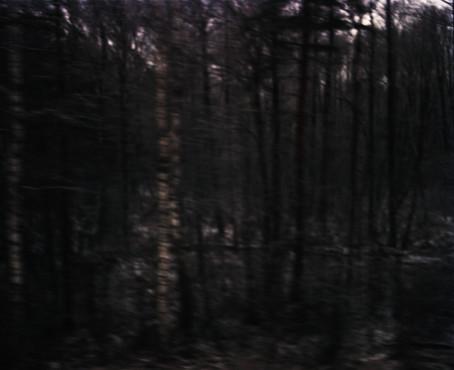 White Noise 06
