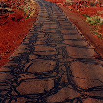 Snake Road.jpg
