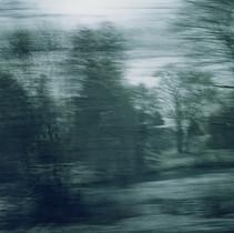 White Noise 01.jpg