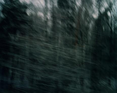 White Noise 11