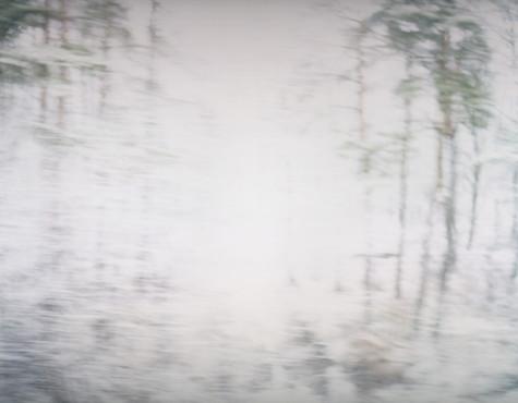 White Noise 07