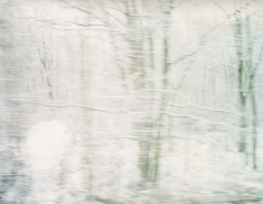 White Noise 12