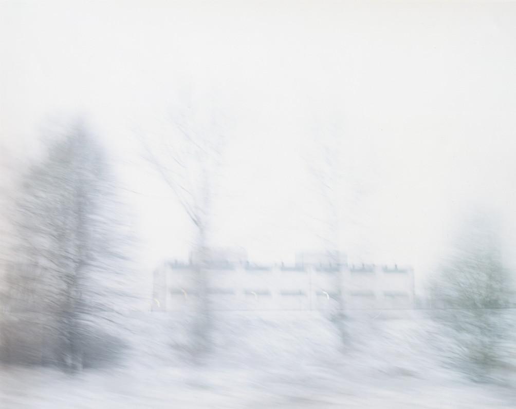 White Noise 09