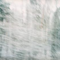 White Noise 10.jpg