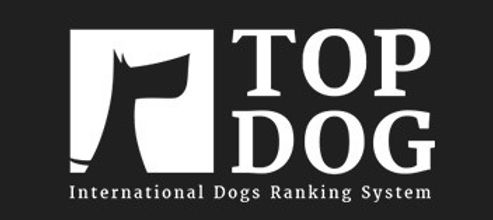 topdog_logo_edited_edited.jpg