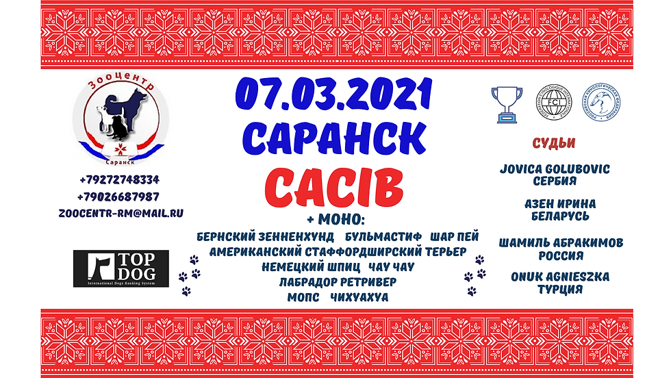 07.03.2021 САРАНСК.png