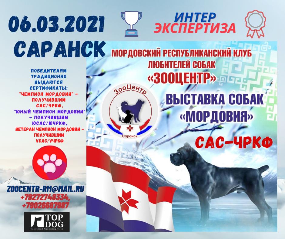 6 марта САРАНСК (1).png