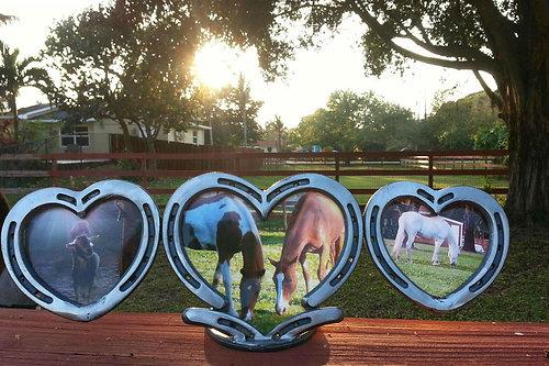 3 Horseshoe Heart Frame