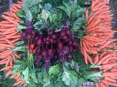 Streamside Farm_carrots and beets.jpg