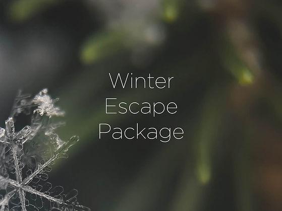 Wix eforea Home Page - Winter Escape.jpg