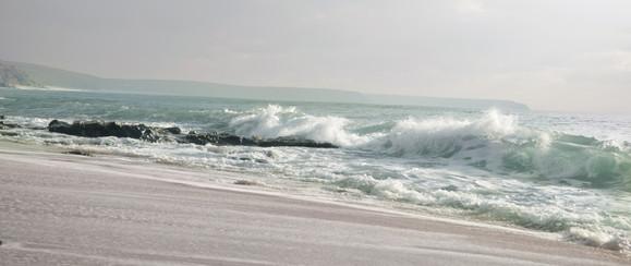 sherbet shoreline