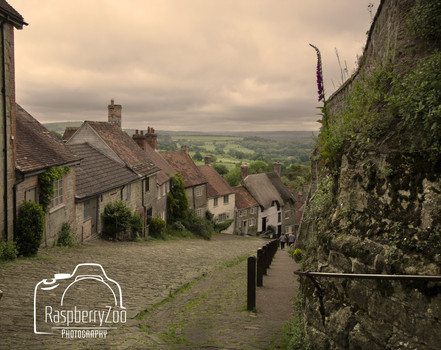 Gold Hill 'Hovis Hill'