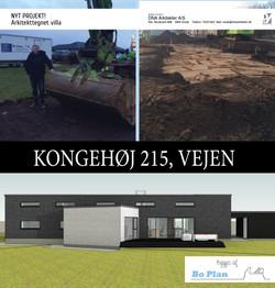 KONGEHØJ_215_feb_2016
