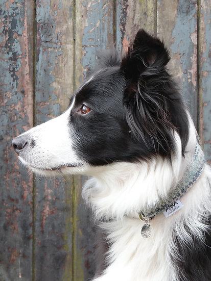 Dog Collar - Wide