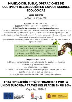 MIRANDA SUELO WEB (2)