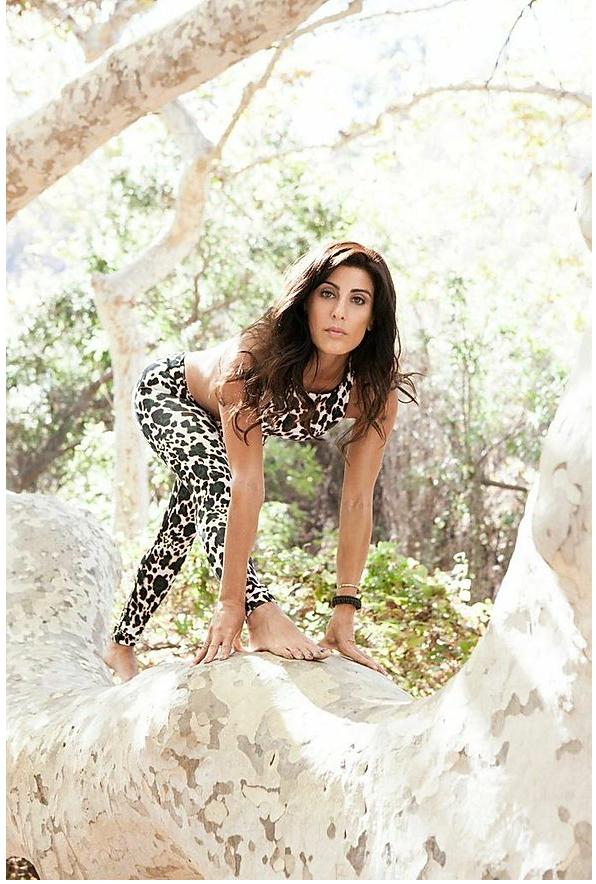 la-yoga-wildcat-5.png