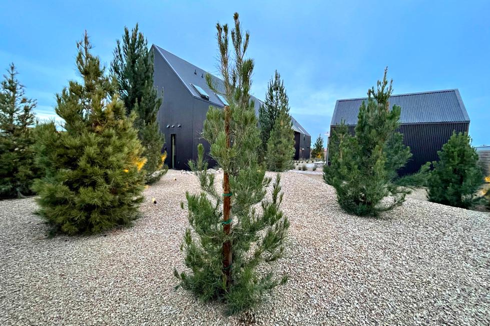 Jewel-Homes-Desert-Cabin-Exterior-Garden
