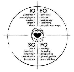 IQ EQ SQ FQ model.jpg