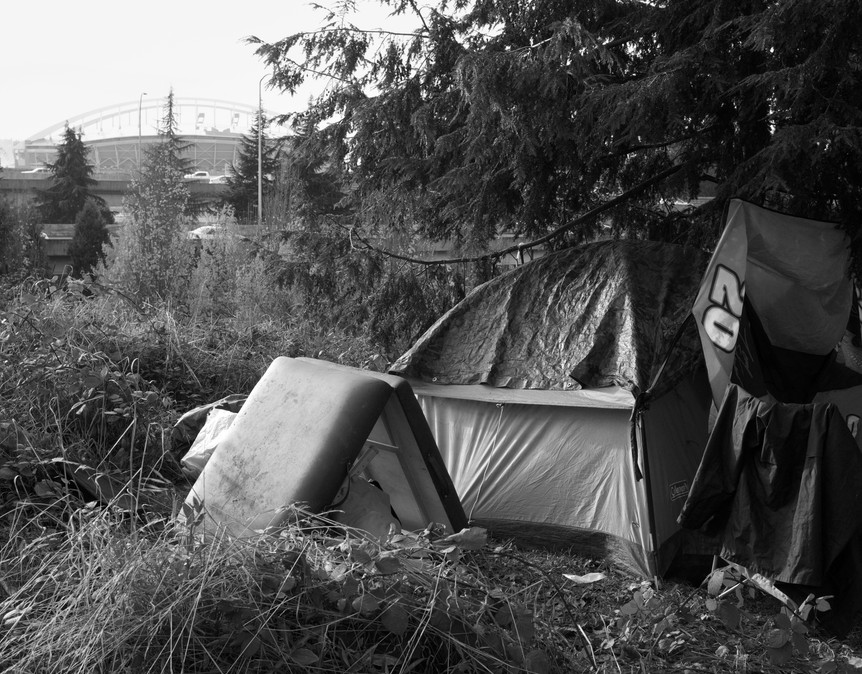 14_Camp with Safeco Dome.jpg