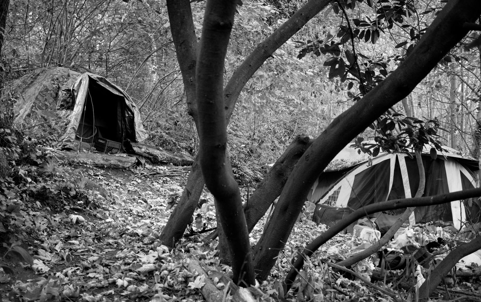 27_Camp on Queen Anne Hill.jpg